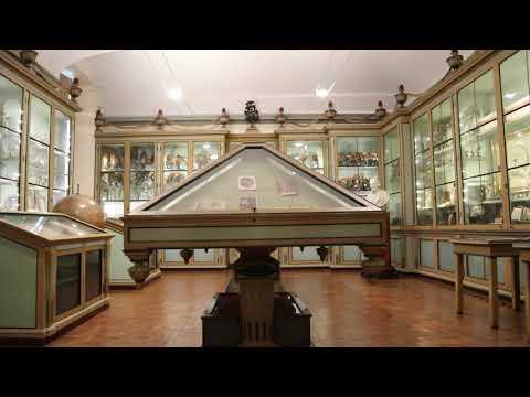 Museo per la Storia dell'Università - Università di Pavia
