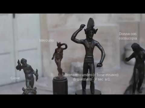 1820-2020, il Museo di Archeologia dell'Università di Pavia compie 200 anni