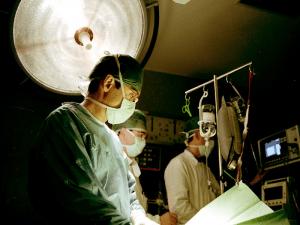 Area Medica e Psicologia – Offerta Formativa